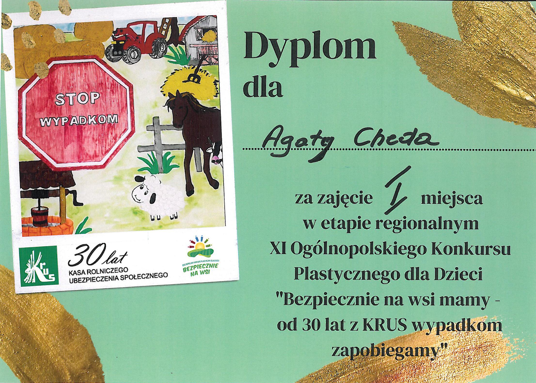 Dyplom Cheda (KRUS 21 06 2021)